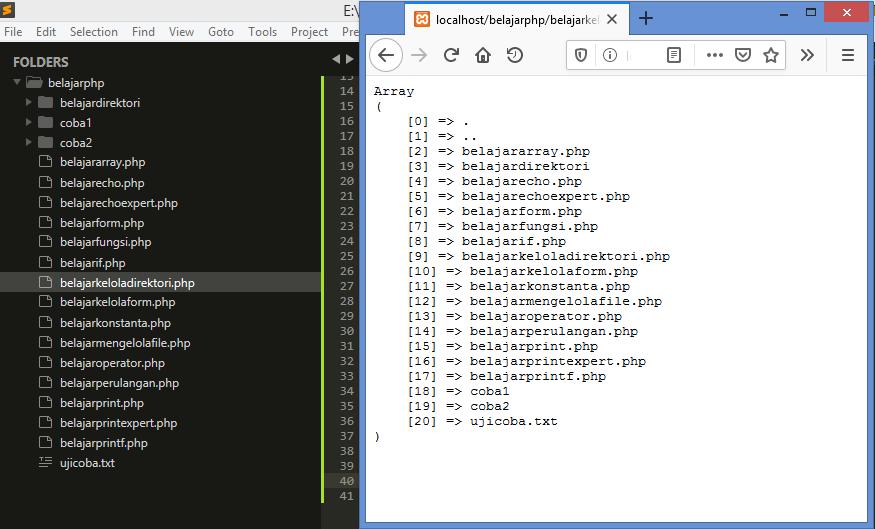 Gambar hasil menampilkan direktori dengan scandir dan print_r di php