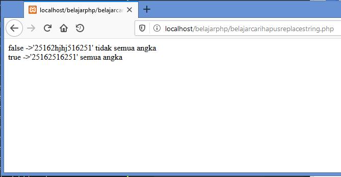 Gambar hasil mengecek data apakah semuanya angka di php