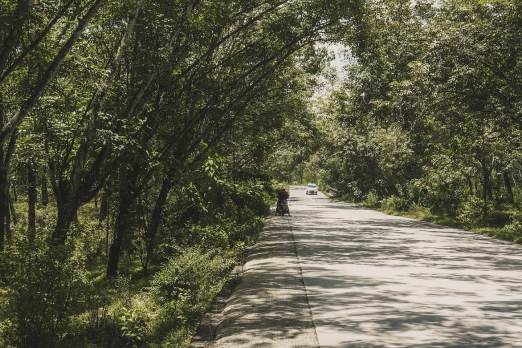 Gambar hasil editing soft brown jalan menggunakan lightroom mobile