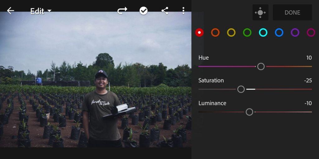Gambar mengatur color mix untuk warna merah foto efek moody dark di Lightroom Mobile