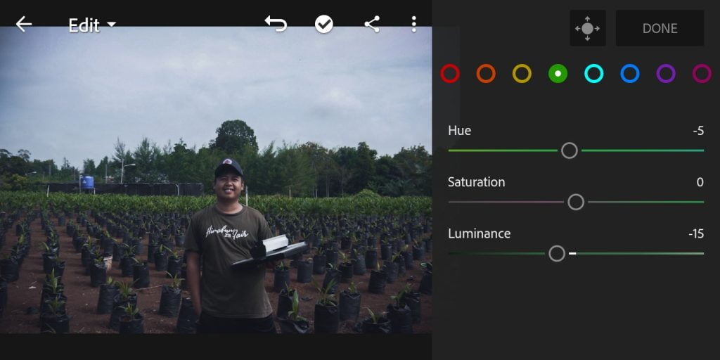 Gambar mengatur color mix untuk warna hijau foto efek moody dark di Lightroom Mobile