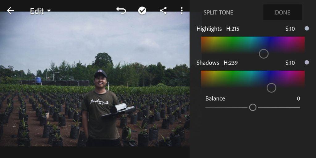 Gambar mengatur split tone untuk foto efek moody dark di Lightroom Mobile
