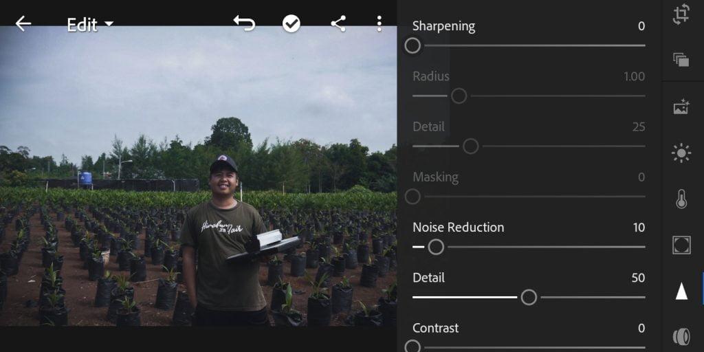 Gambar mengatur noise reduction untuk foto efek moody dark di Lightroom Mobile